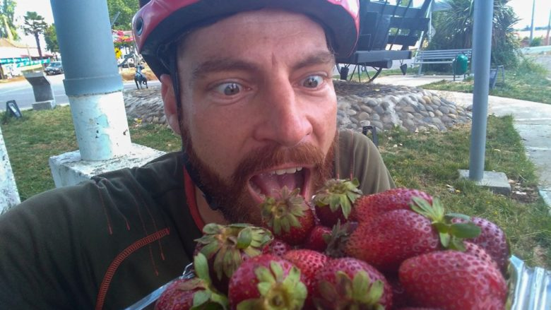 Erdbeerenparadis Chile